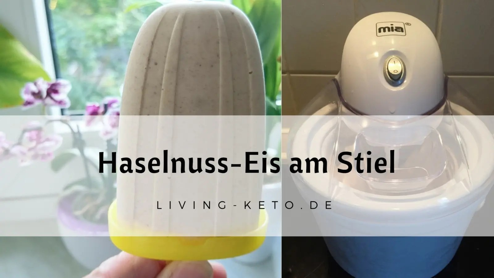 Read more about the article Ketogenes Haselnuss-Eis