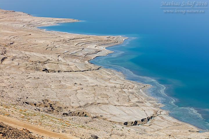 Landschaft_Israel_5DSR_26668