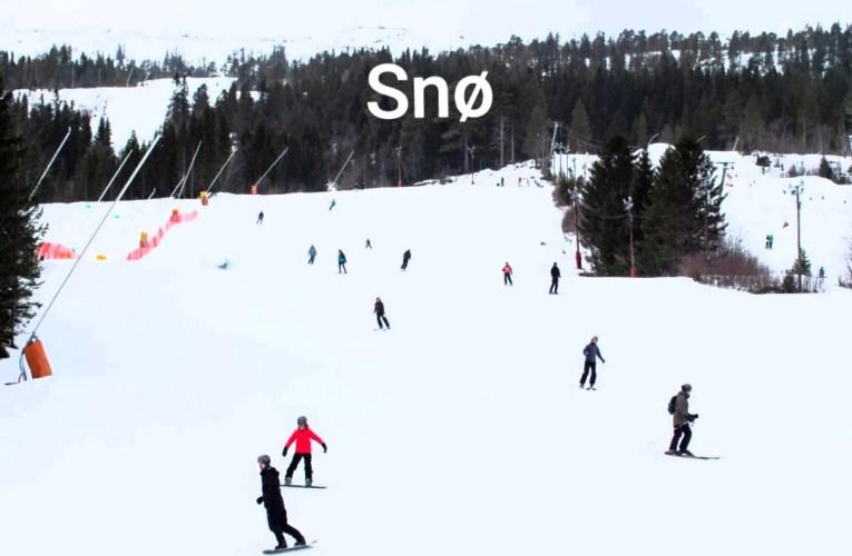 Snø til glede og forargelse