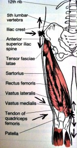 Fibromyalgia Leg Pain results when strength and agility are lost.