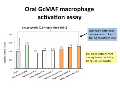 macrophage_gcmaf_tests_oral_colostrum_maf_phagocytic_activity_720