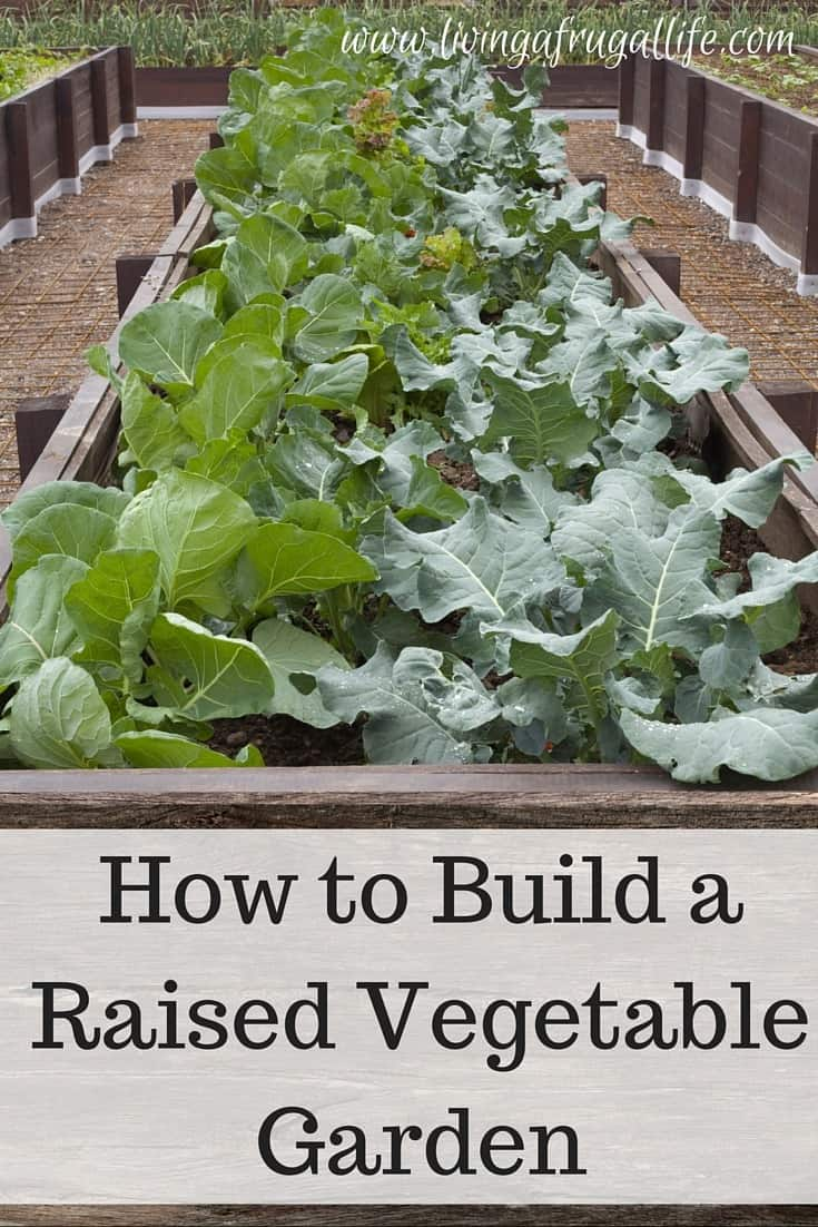 How Make Small Raised Garden