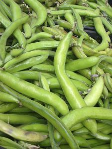 Broad beans by Jeremy Keith