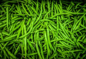 Green Beans / French bean / Haricot vert / String beans (Fagiolino / Cornetto / Fagiolo mangiatutto) (Phaseolus vulgaris)