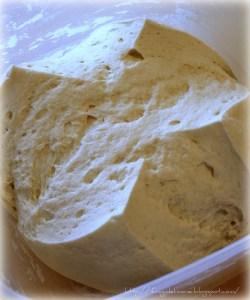 Starter / Leavened dough (Biga)