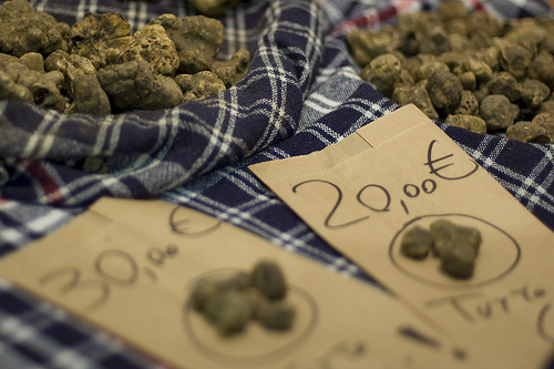 White truffles at market by Alessandro Giannini