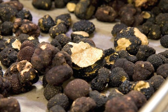 Black truffles by Fulminating