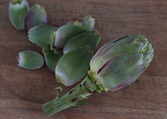 how to prepare artichokes-3