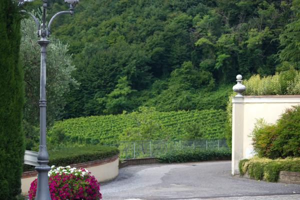 Cellar Visit: La Montina in Franciacorta