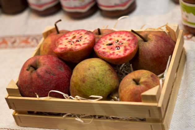 Cocomerina pears from the Alpennines in Emilia Romagna