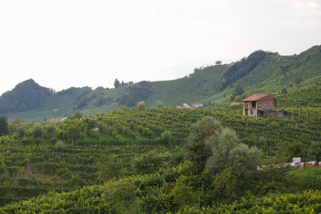 Think you know Prosecco? Think again. Cellar Tour: Bisol