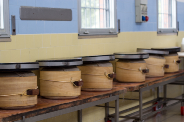 The curd is weighed down to press out excess liquid
