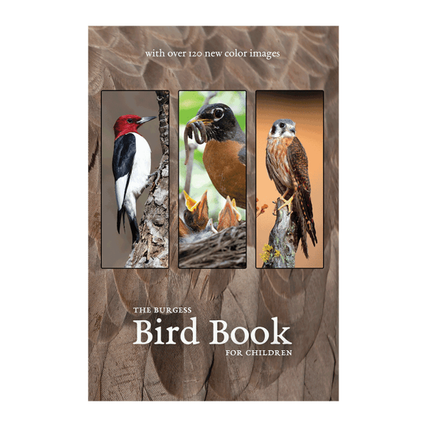 The Burgess Bird book with new images