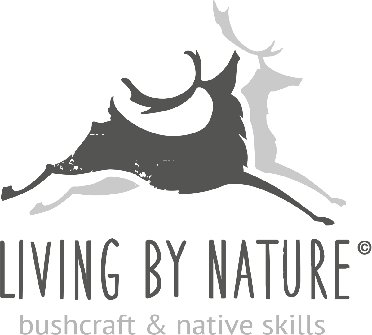 Living by Nature Logo