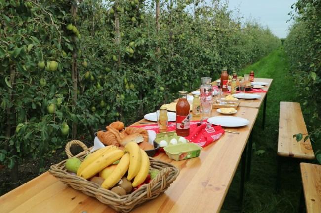 Ontbijt in de boomgaard - Flevoland