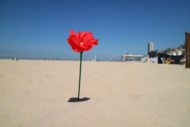 Strandbloemen maken