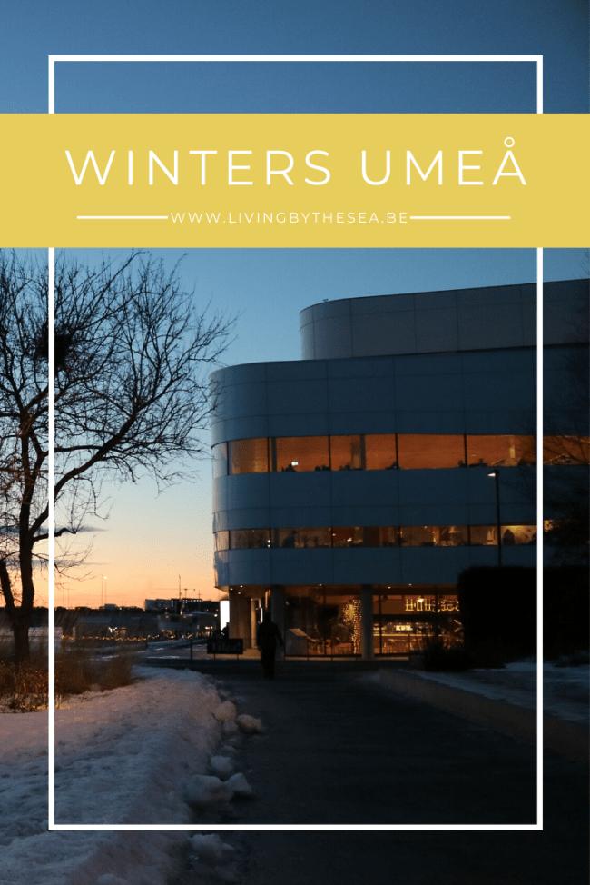 Winterse citytrip Umeå
