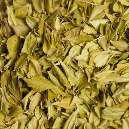 Buchu Leaf Organic