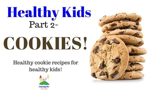 healthy kids heathy cookie recipes