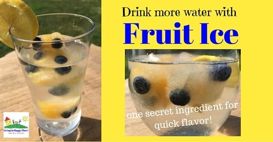 Fruit Ice for delicious fruit water