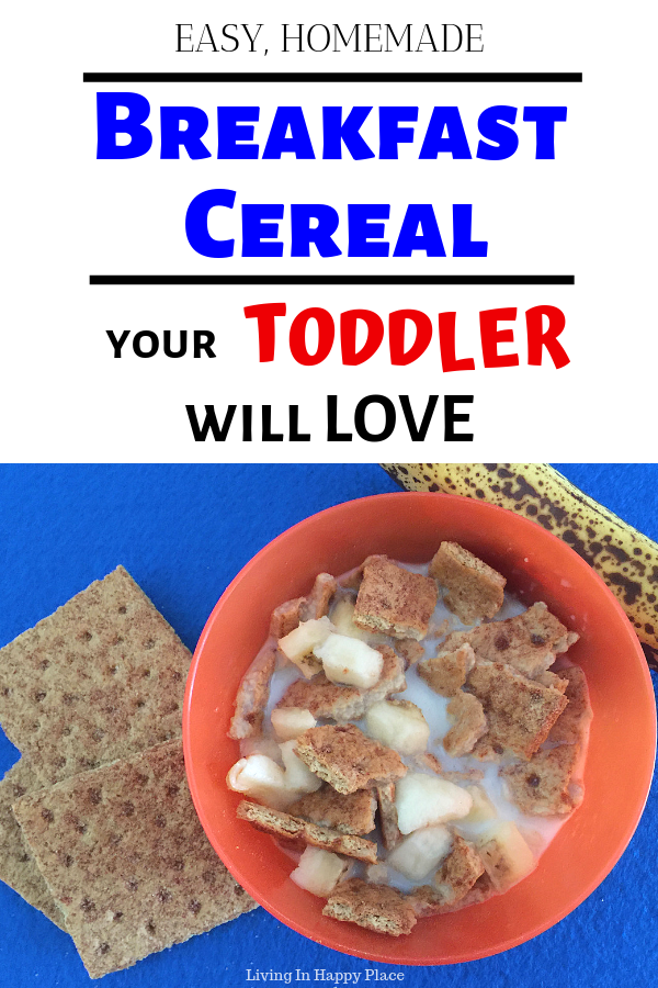 toddler breakfast idea