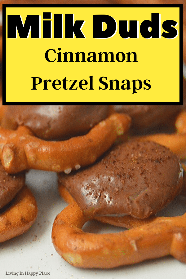 Milk Duds Pretzel Snaps with sweet cinnamon dust