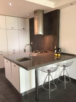 Organic house - kitchen detail