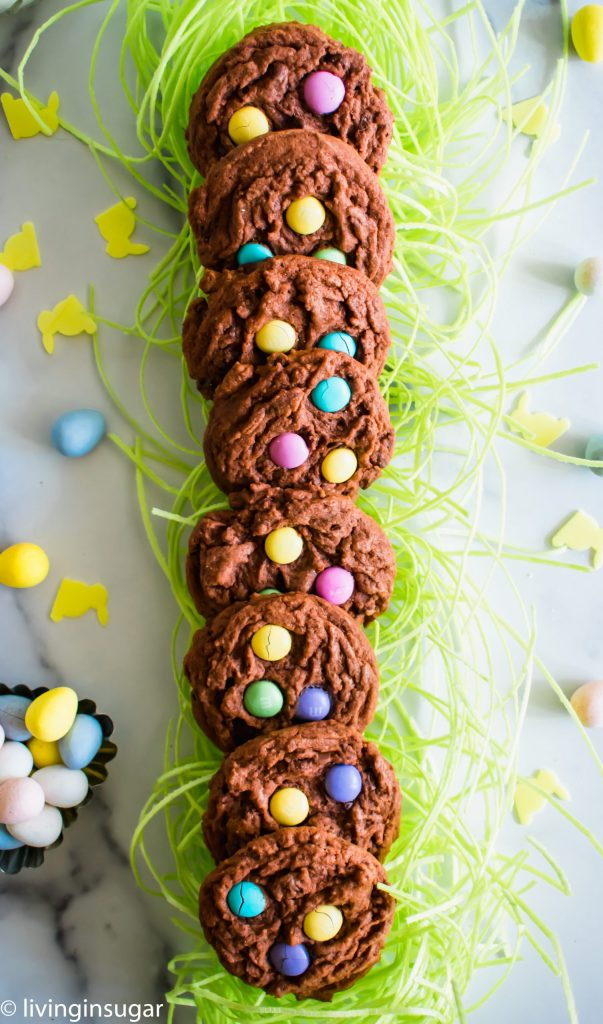 Chocoalte Easter Cookies on green grass