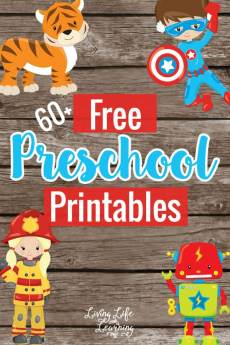 Have some fun with your preschooler and learn at the same time with these education free preschool printables in various seasonal themes.