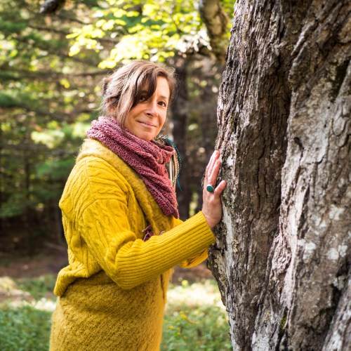 amanda ring seven feathers healing arts connecting with a maple tree