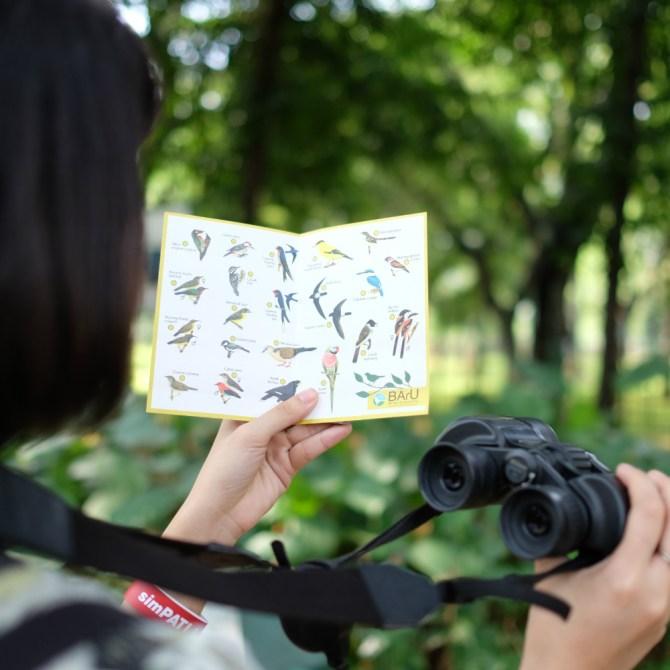 sponsored-birdwatching-3