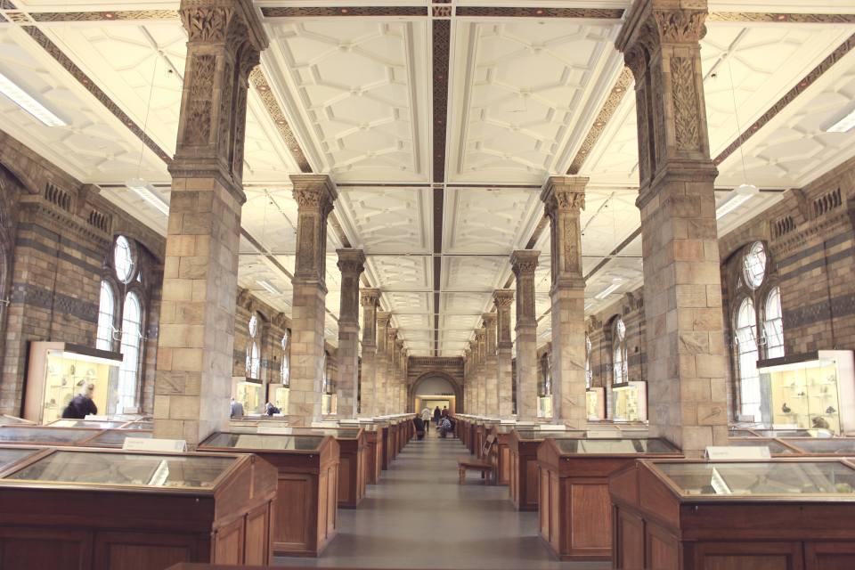 travel-london-natural-history-museum-nike-prima-livingloving-2