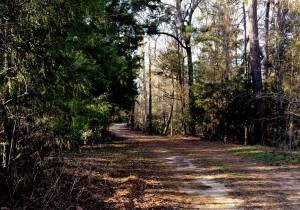 Retreat Trail