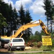 Trees Come Down, Land Clearing Begins for Second Snoquamie Ridge Market-Rate Apartment Complex