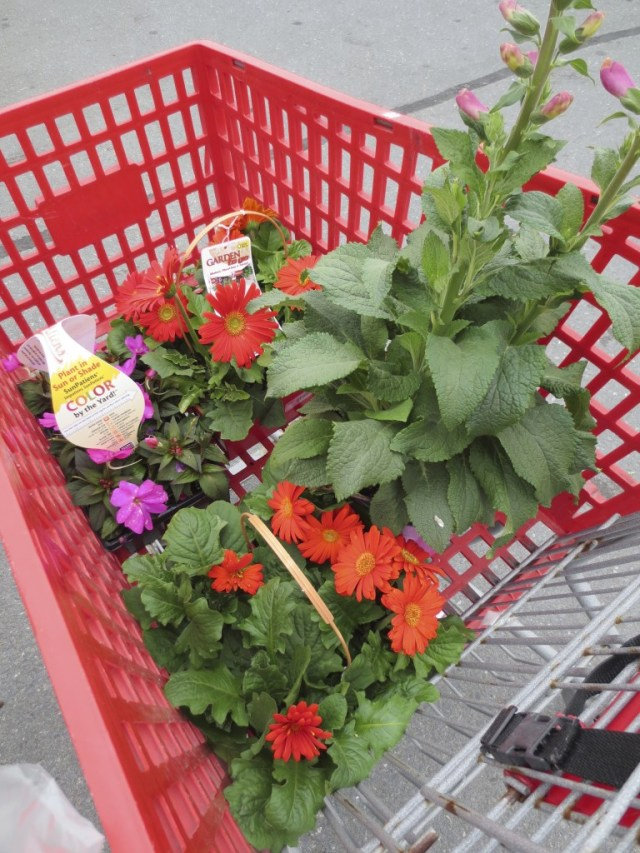 shopping cart with flowers