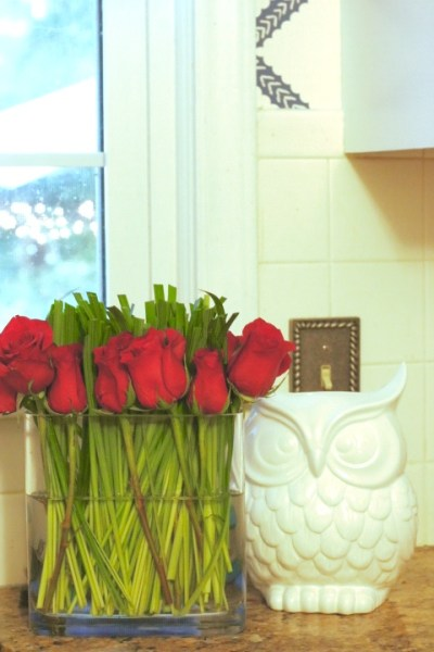 White Owl Decor - Blue And White Kitchen: Living With Color Designs
