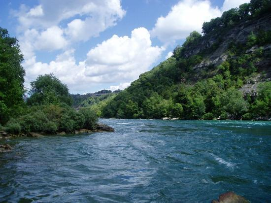 Rivers, Mikvahs, and Saying Something Nice (Vayigash)