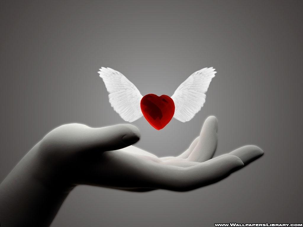 Succos: Building a New Heart