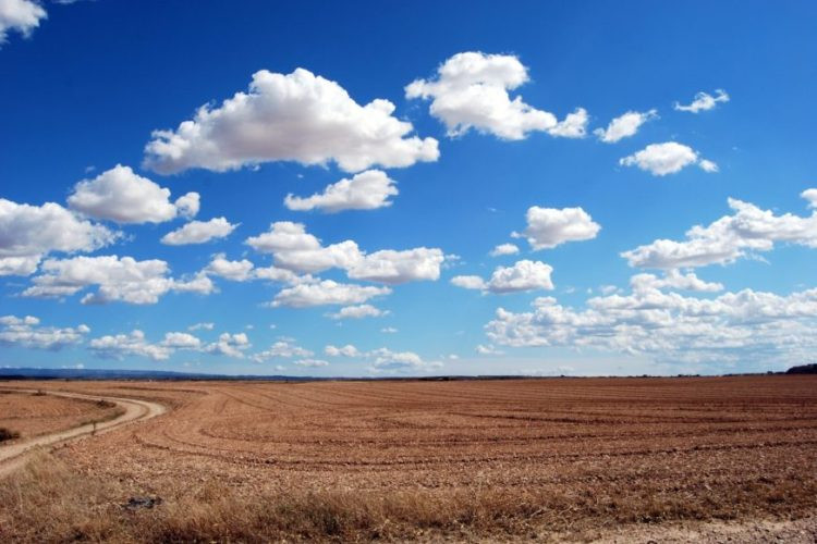 Field Clouds Sky Earth 46160