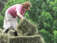 Farmstay Guest Lends a Hand at VT Grand View Farm