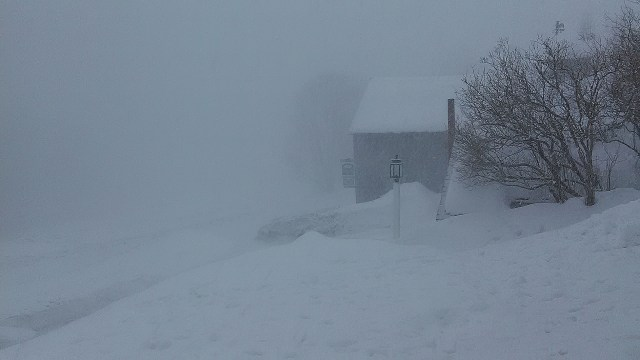 A New England Snow Squall