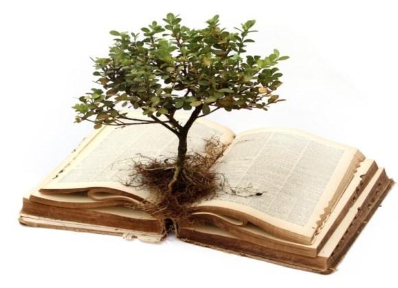 """""""Bible Roots"""" Growing Deeper"""