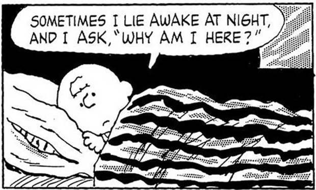 "Sometimes I lie awake at night, and I ask, ""Why am I here?"""