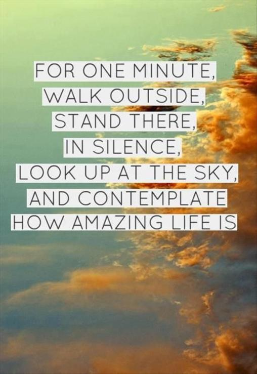 For one minute, walk outside, stand there, in silence, look up at the sky, and contemplate how amazing life is.
