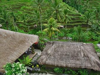 Indonesia_10