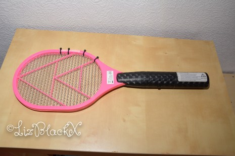 Liz BlackX The fly swatter as described in the text