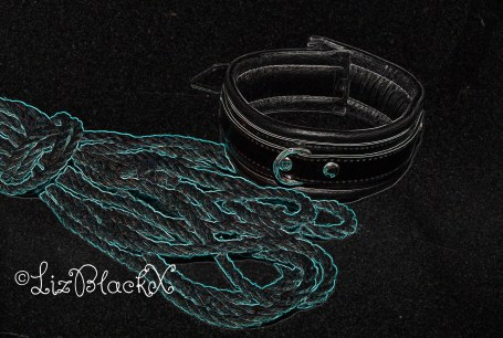 Picture of Collar and Rope  Copyright Liz BlackX