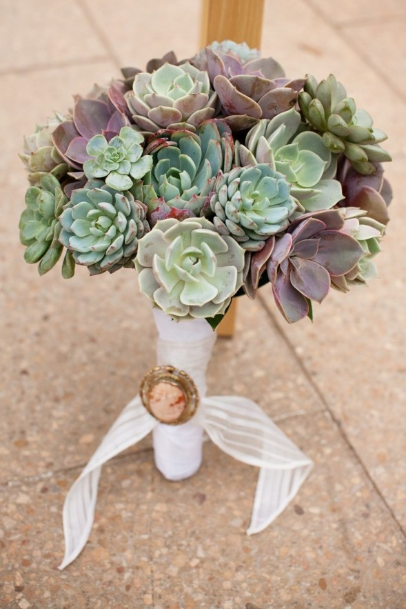Top 12 Succulent Diy Projects Liz Marie Blog