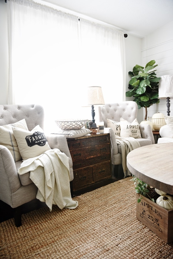 Neutral fall pillows for Living room seats designs