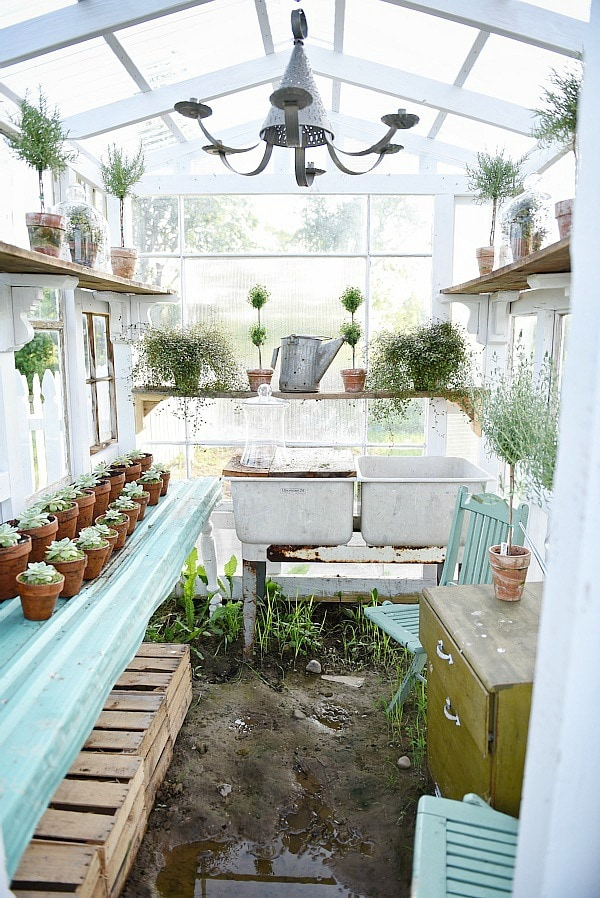 DIY Rustic Window Greenhouse   Take The Full Tour Of This Hand Built  Greenhouse Made Out